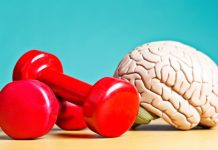 Exercise Enhances Long-Term Brain Function